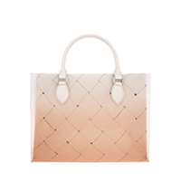 WOVEN DOUBLE TOP HANDLE BAG