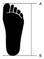 Khoảng cách giữa A và B là chiều dài bàn chân của bạn.